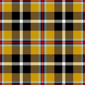Cornish Tartan // Large