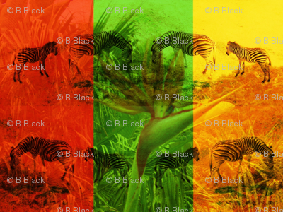 Zebras & Birds of Paradise Flowers
