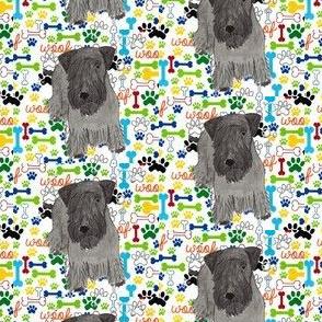 Cesky terrier woof paw bone