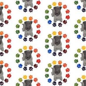 Cesky terrier pawprint circle