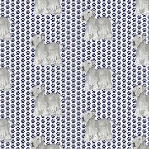 Cesky terrier pawprints