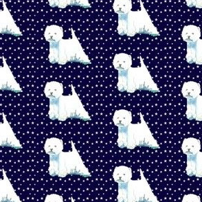 west highland white terrier westie stars