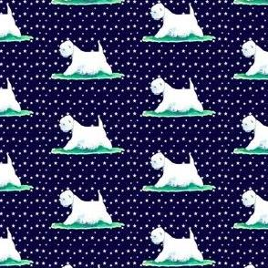 west highland white terrier stars westie