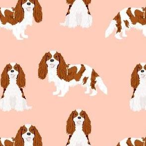 cavalier king charles spaniel blenheim simple dog fabric pink