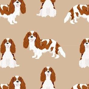 cavalier king charles spaniel blenheim simple dog fabric tan