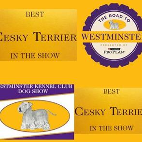 Best in Show Cesky