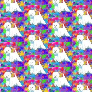 Westie West highland terrier on Colorful background