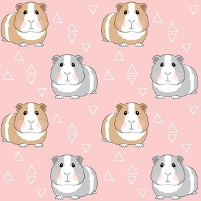 guinea-pigs-with-triangles-on-pink