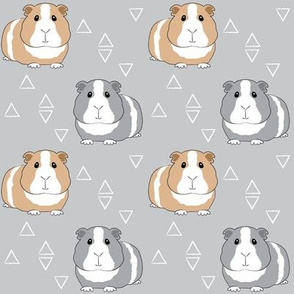 guinea-pigs-with-triangles-on-grey