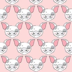 spotted pig faces on pink