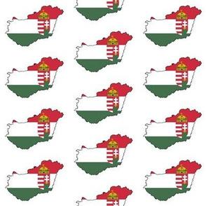 Hungarian Flag Overlay