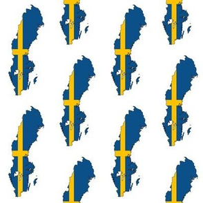 Swedish Flag Overlay