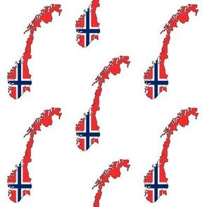 Norwegian Flag Overlay // Small