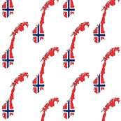 Norway Flag Overlay