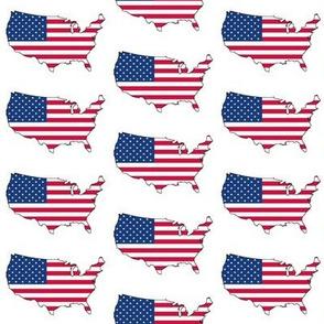 USA Flag Overlay