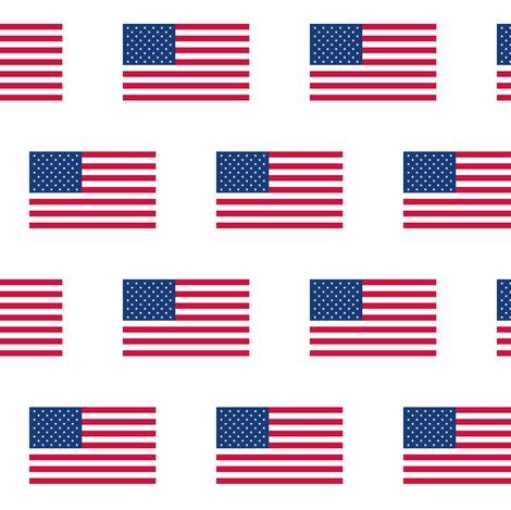 Ramerican-flag_shop_preview