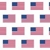 Ramerican-flag_shop_thumb