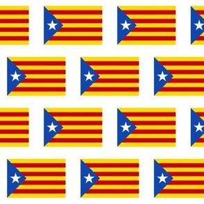 Catalonian Flag // Small
