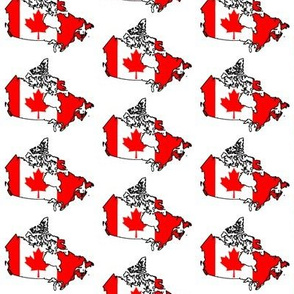 Canadian Flag Overlay // Small