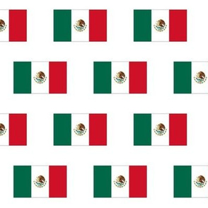 Mexican Flag // Small