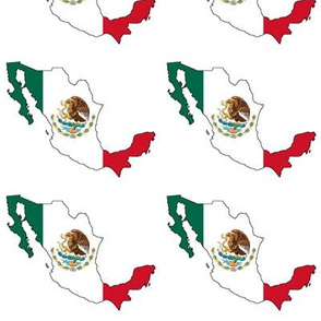Mexican Flag Overlay // Large