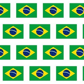 Brazilian Flag // Small