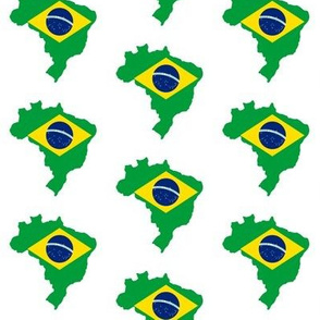Brazilian Flag Overlay // Small