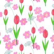 Tulips and Florals
