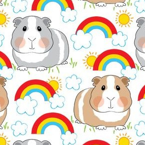 guinea-pigs-and-rainbows-on white