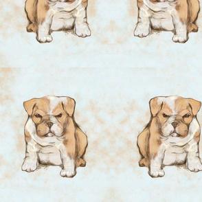 Custom Grumpy Bulldog Pup