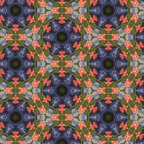 Hydrangea and Cosmos_3