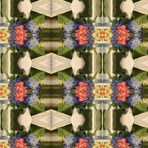 Hydrangea Cosmos_10