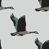 geese_light
