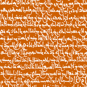 Ancient Arabic on Orange // Large