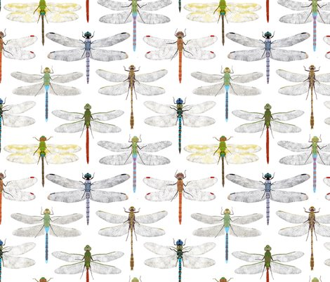 Rdragonflypattern_shop_preview
