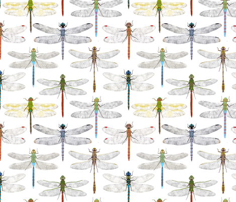 dragonflies fabric by amy_hadden on Spoonflower - custom fabric