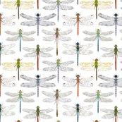Rdragonflypattern_shop_thumb