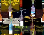 Rdragonflypattern_thumb