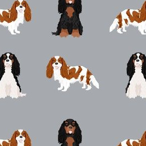 cavalier king charles spaniel mixed coats  dog fabric grey