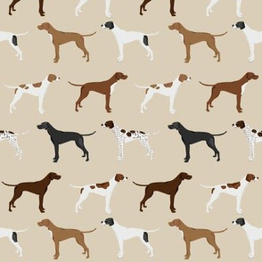 english pointers fabric - dog breed coat colors - tan