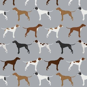 english pointers fabric - dog breed coat colors - grey