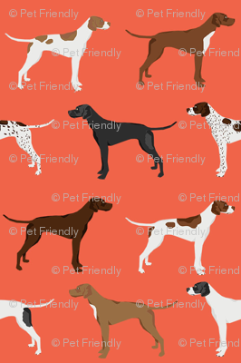 english pointers fabric - dog breed coat colors - orange