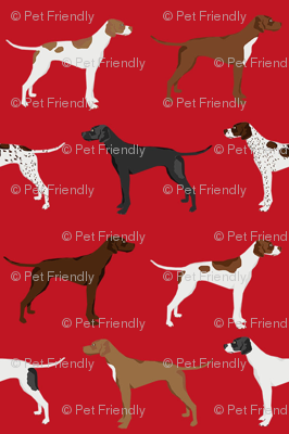 english pointers fabric - dog breed coat colors - red