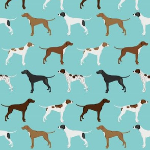 english pointers fabric - dog breed coat colors - light blue