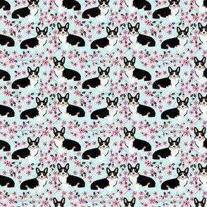 Corgi tri colored cherry blossom light blue  (ULTRA TINY)