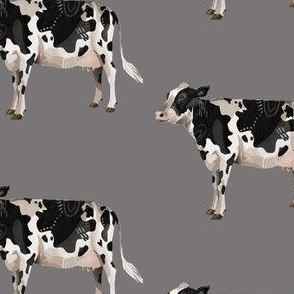 Dairy Cow - Grey Background