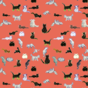 all the cats on red