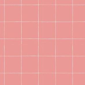 Ellie's Friends_Plaid_Pink x White