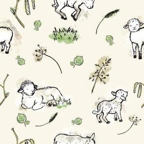 Happy Lambs