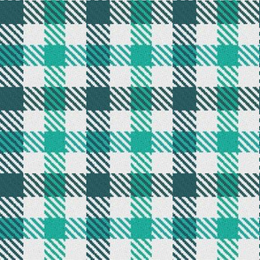 Two Color Gingham Teal and Turquoise